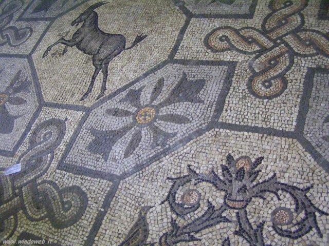 Mosaico%2520foto_aquileia_040