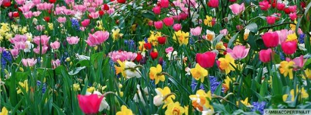 Donne-campo-di-fiori
