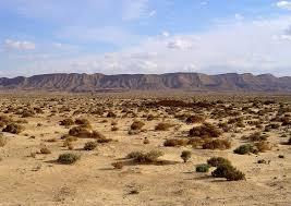 Pascolo deserto