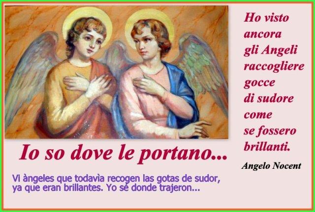 1-Angeli2
