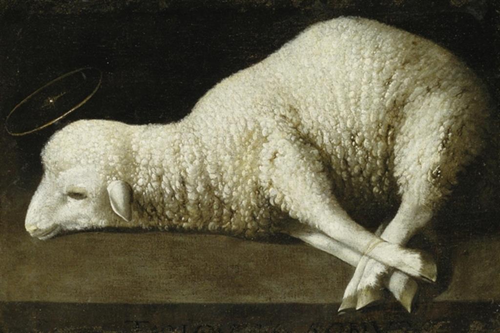 Gesù - agnello mansueto